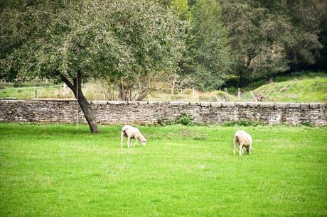 Paysage bucolique de la Petite Suisse Lorraine à Martincourt © French Moments