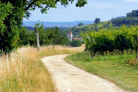 Envie d'évasion en Alsace-Lorraine - Pagney-derrière-Barrine © French Moments