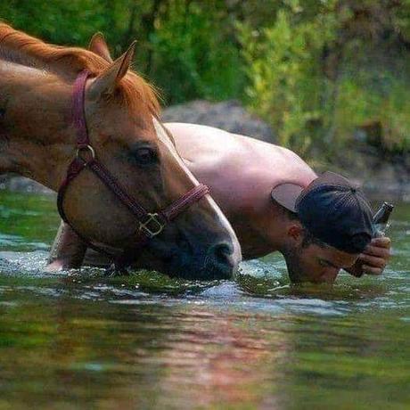 Suivre les animaux pour apprécier les bienfaits de la nature