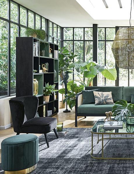 salon végétal urban jungle baie vitrée noire table basse laiton verre