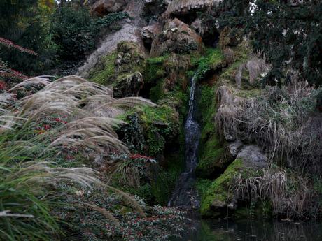Balade naturaliste au parc de Bagatelle