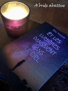 Et les lumières dansaient dans le ciel d'Eric Pessan