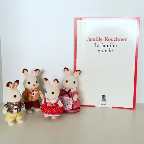 J'ai lu: La familia grande de Camille Kouchner