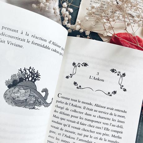 🌱 Roman jeunesse : Aliénor fille de Merlin - partie 1 🌱
