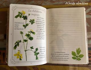 Plantes bienfaisantes, un carnet de notes des Editions De Borée
