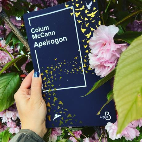 J'ai lu: Apeirogon de Colum McCann