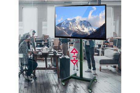 OMB Big Trolley : le chariot pour grands écrans le plus économique