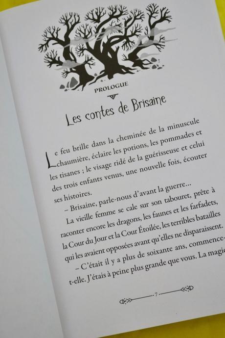 """Roman """"fantasy"""" jeunesse: Les Héritiers de BRISAINE Editions Nathan"""