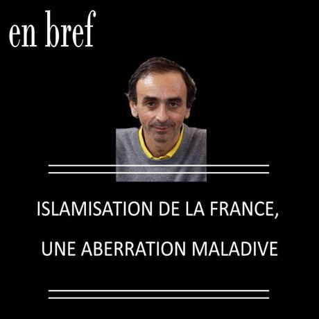 ISLAMISATION DE LA FRANCE, UNE ABERRATION MALADIVE DE ZEMMOUR, LÉVY ET ONFRAY