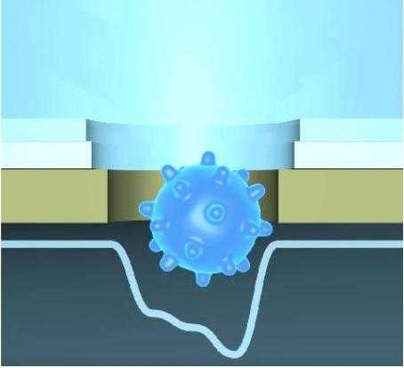 La nouvelle technologie permet d'identifier avec précision, grâce à l'apprentissage automatique, des particules virales uniques traversant un nanopore (Visuel Visuel Osaka University).