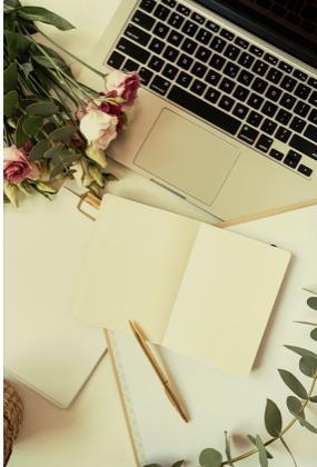 nouvelle newsletter pour mon blog via follow.it