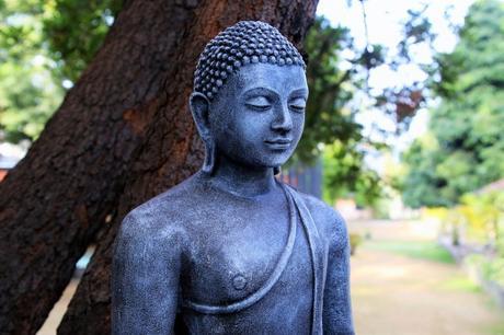 Quand Bouddha se fait insulter