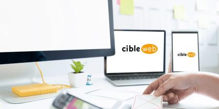 Confiez vos campagnes publicitaires à Cibleweb