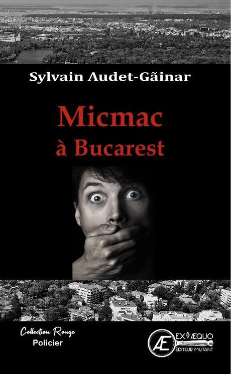 A la découverte de … Sylvain Audet-Găinar