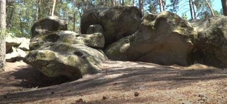 Le site préhistorique de la forêt de Fontainebleau