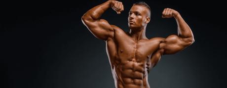 créatine muscle