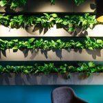 étagère végétale déco