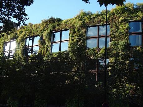 mur végétal bâtiment