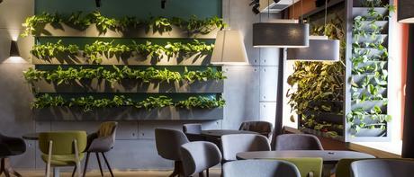 Le mur végétal : la tendance écolo déco qui prend de la hauteur !