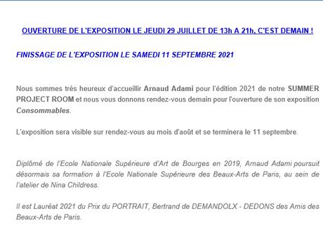 Galerie Valérie Delaunay  » Arnaud Adami «