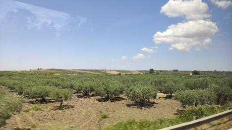 De Palermo à Trapani