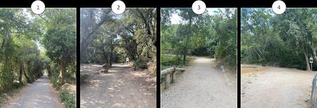 Une semaine en Provence : La cascade de Sillans