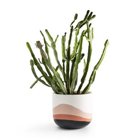 objet déco en céramique cache-pot cactus grand rose