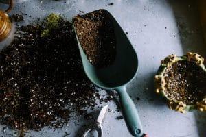 En quoi consiste l'éco-jardinage?