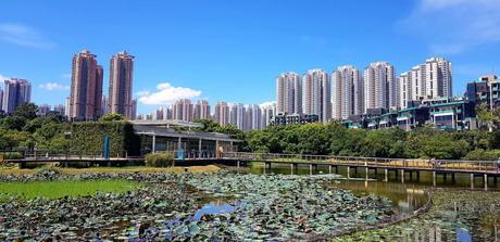 28 août – Escapade à Tin Shui Wai