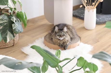DIY griffoir chat