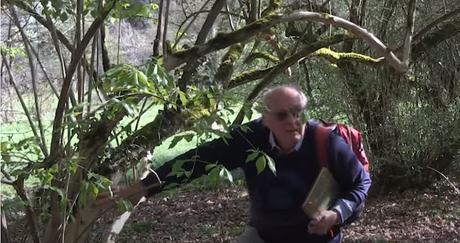 L'arbre et sa structure : formation complète de Françis Hallé (vidéo)