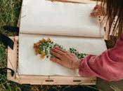 Comment créer cadre pour herbier