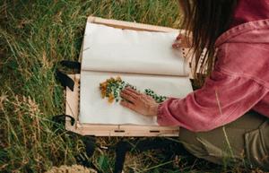 Conseils pour créer un cadre pour herbier