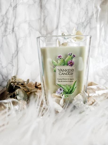 Yankee Candle Eau de Cactus et Agrave
