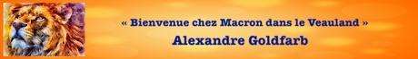 Zemmour candidat = panique en Macronie