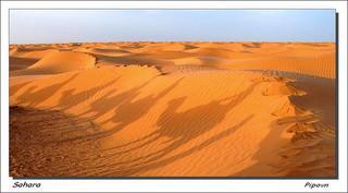 Sahara en Tunisie