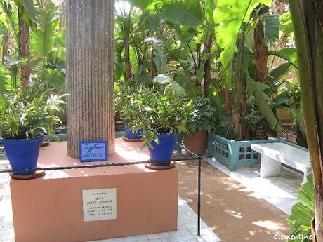 Voyage au Maroc - Le jardin Majorelle