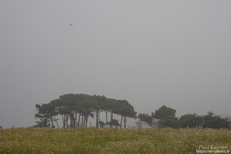 balade à #Langolen & #Briec #Bretagne #Finistère