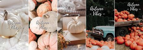 Wallpaper #10  Autumn Vibes