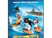 rois glisse (2007)